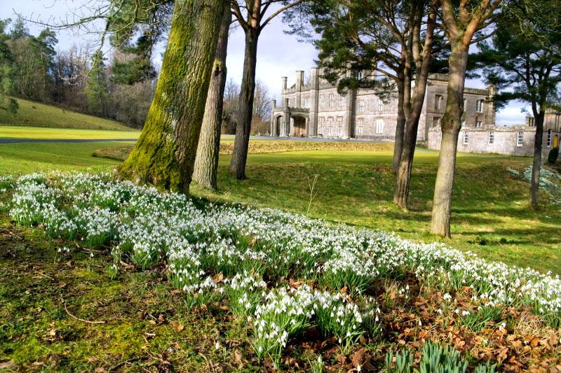 Garden Centre: By The Hollies B&B, Prestwick